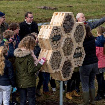 Bijenhotels langs het Bels Lijntje  | Jopiefonds