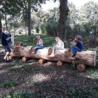 Boomstamtrein Natuurspeeltuin de Takkenbende | Jopiefonds