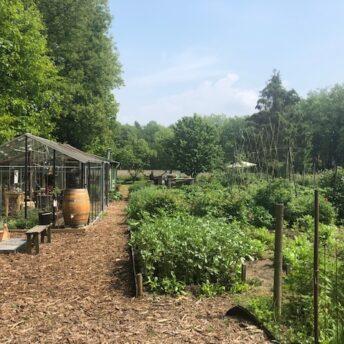 Pluk&Plenty | Jopiefonds